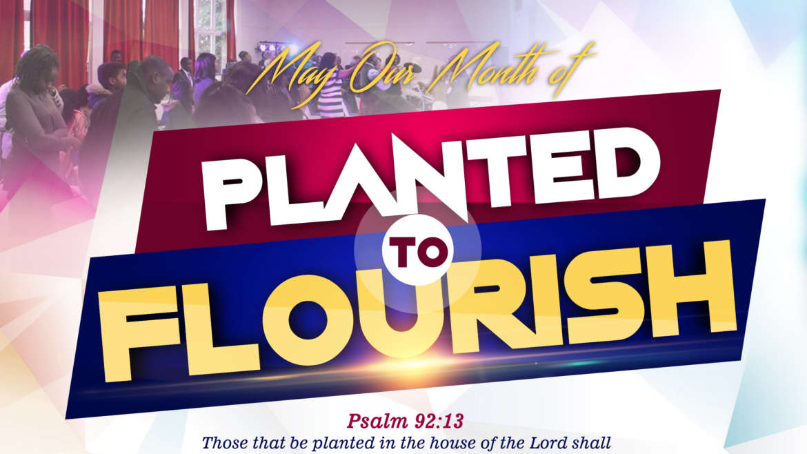 Welcome to May Our Month of Planted to Flourish